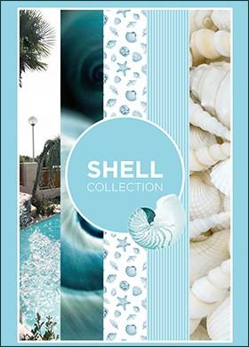 Vi Shell Ed 160x240 1 - Catálogos Por Series